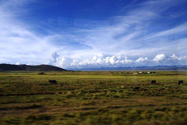 ボリビアの旅(43) ティワナクからラパスへ戻る。_c0011649_6433152.jpg