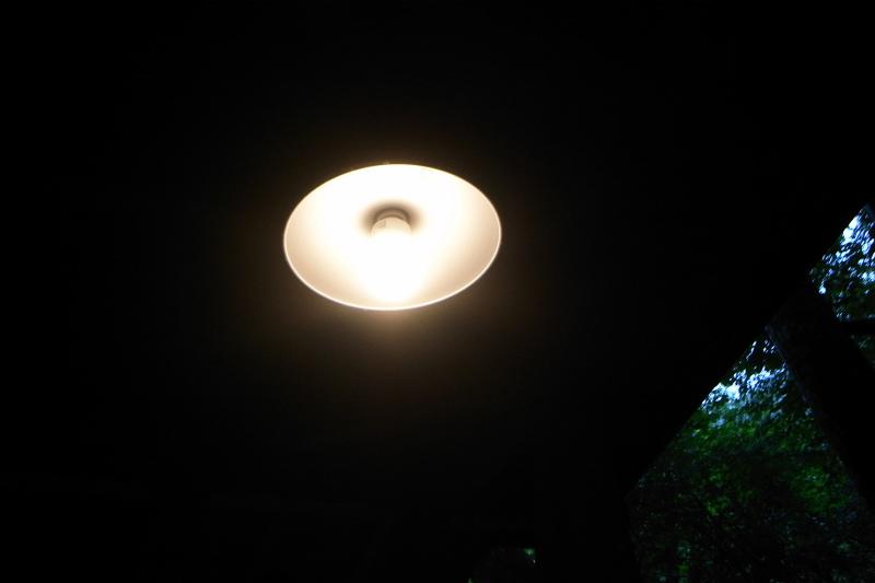 d0156352_858910.jpg