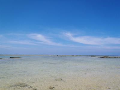 カーミージーの干潟散策_c0180460_1561464.jpg