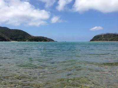 松田さんと無人島へ…_f0074571_10572745.jpg