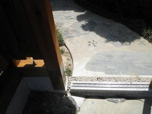 数寄屋門の修理完成しました_b0232198_1127975.jpg