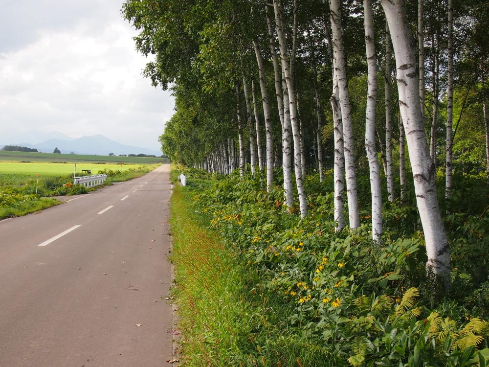 9月の中札内村・・「実りの秋の農村風景」_f0276498_23305134.jpg