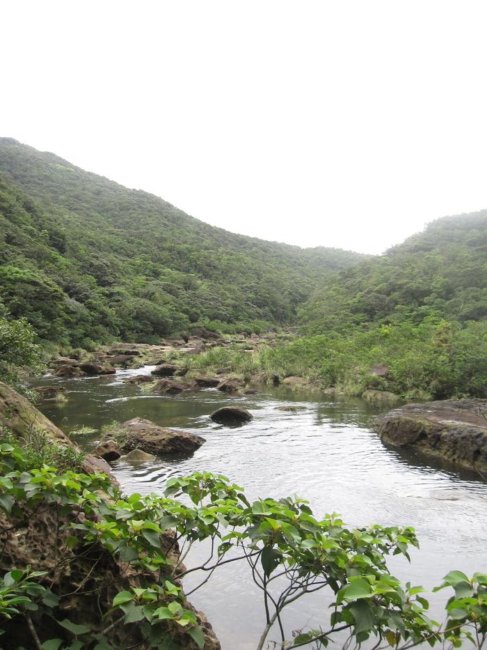 西表ジャングル縦断記録_e0155231_22535636.jpg