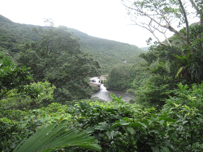西表ジャングル縦断記録_e0155231_22561385.jpg