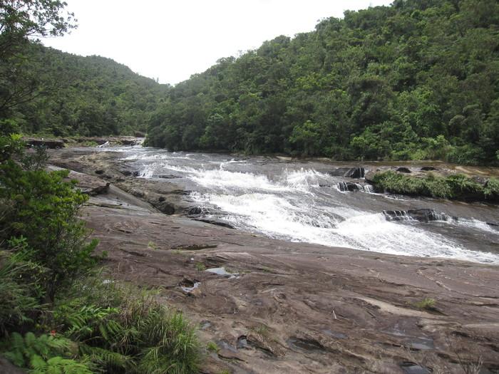 西表ジャングル縦断記録_e0155231_22571450.jpg
