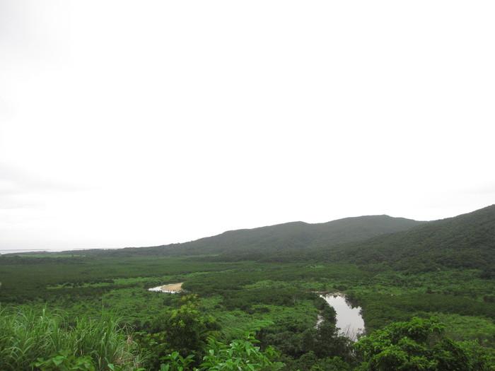 西表ジャングル縦断記録_e0155231_22593332.jpg