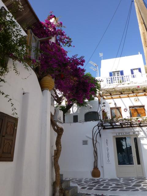 ギリシャ ミコノス島旅行記 4日目-3_e0237625_13114926.jpg