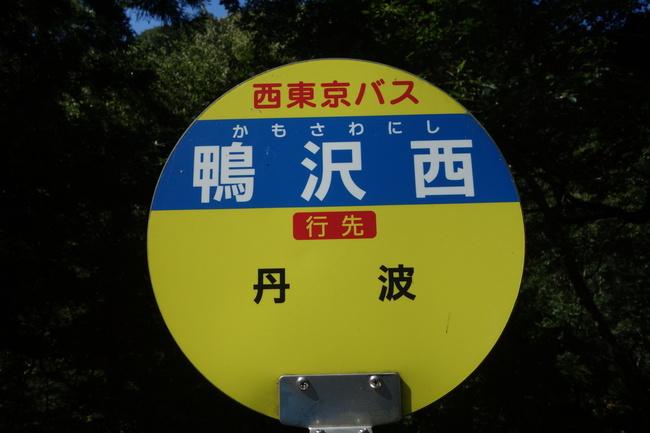 d0295126_223054.jpg