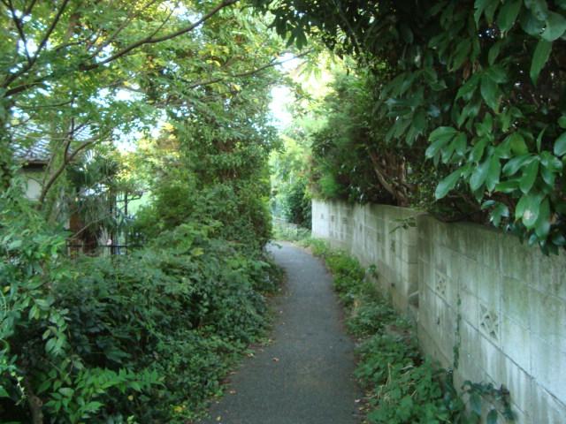 北鎌倉「GALLERY NEST ギャラリーネスト」へ行く。_f0232060_15354643.jpg