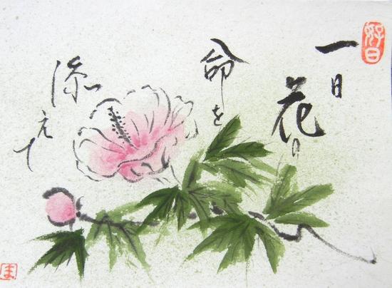 '13,9,14(土)今日は「石川さゆり」ちゃんを観に~!_f0060461_7323889.jpg