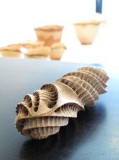 藤沼哲の木彫展、17日まで_c0218903_8281256.jpg