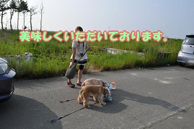 b0067012_2583211.jpg