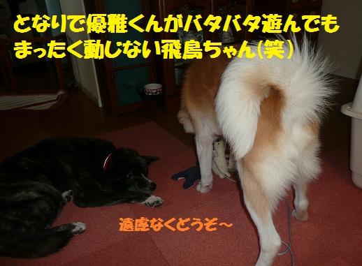 f0121712_17341655.jpg