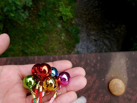 2013年9月『奥信州 幻のキノコ旅』【2】_e0071652_20425460.jpg