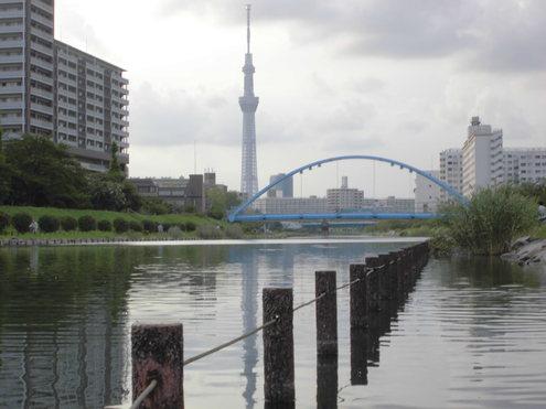 今日は扇橋ゲ-トスタ-ト_c0249569_10525832.jpg