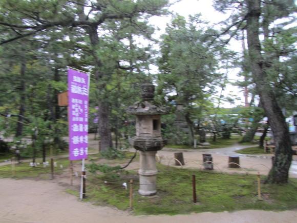 天空の「竹田城跡」①_a0100706_17414326.jpg