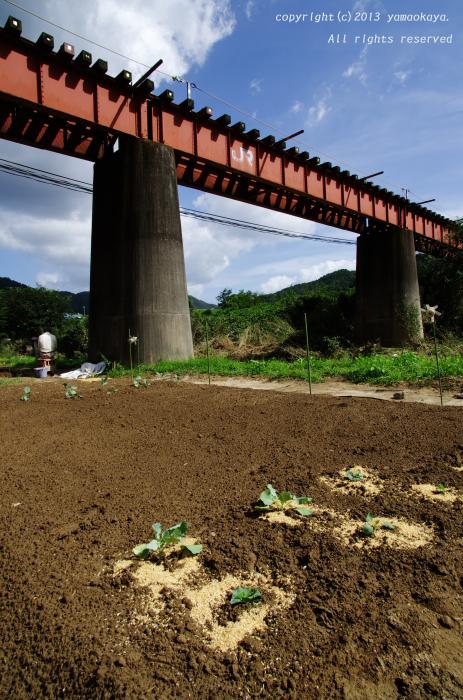 井原川橋梁(因原の鉄橋)の現在_d0309612_22271199.jpg