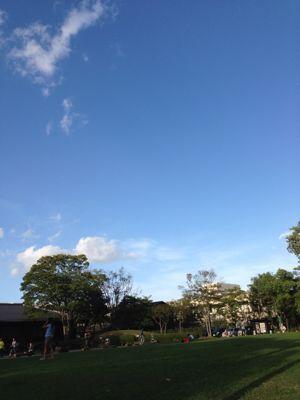 台風一過_f0155431_22235479.jpg