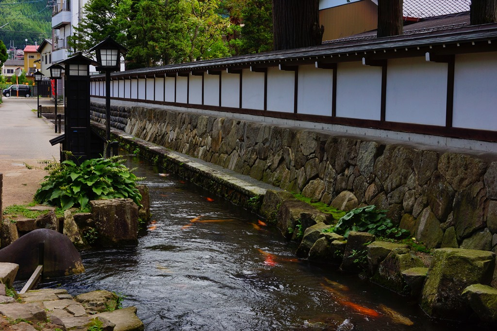 river & carp(岐阜県飛騨市古川...