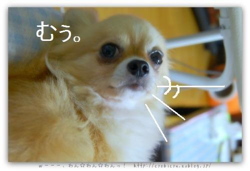 b0112758_1842470.jpg