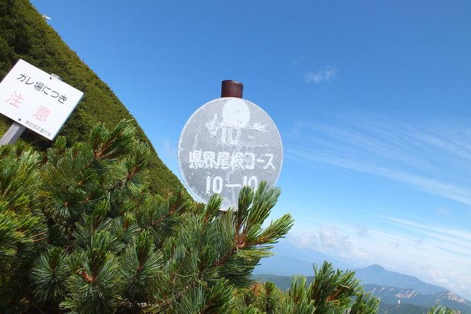 TOP OF AKADAKE!_a0040879_11575629.jpg