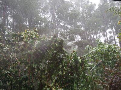 台風18号_d0133485_13415984.jpg