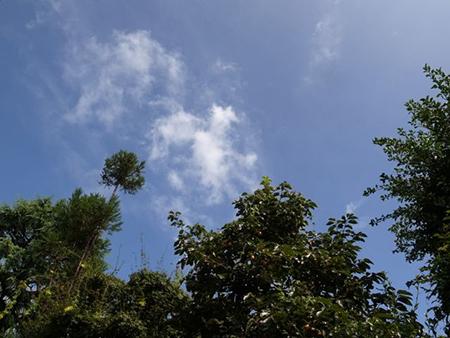 台風の中_b0038919_917493.jpg