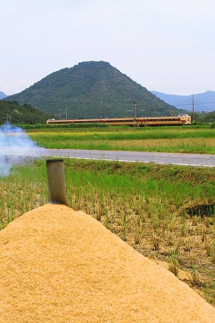 2013年9月 刈り入れ終わる福知山線_f0233120_2216322.jpg