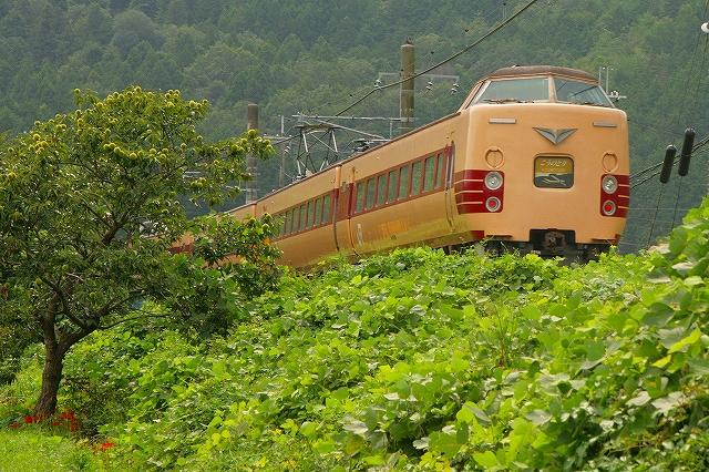 2013年9月 刈り入れ終わる福知山線_f0233120_2232114.jpg