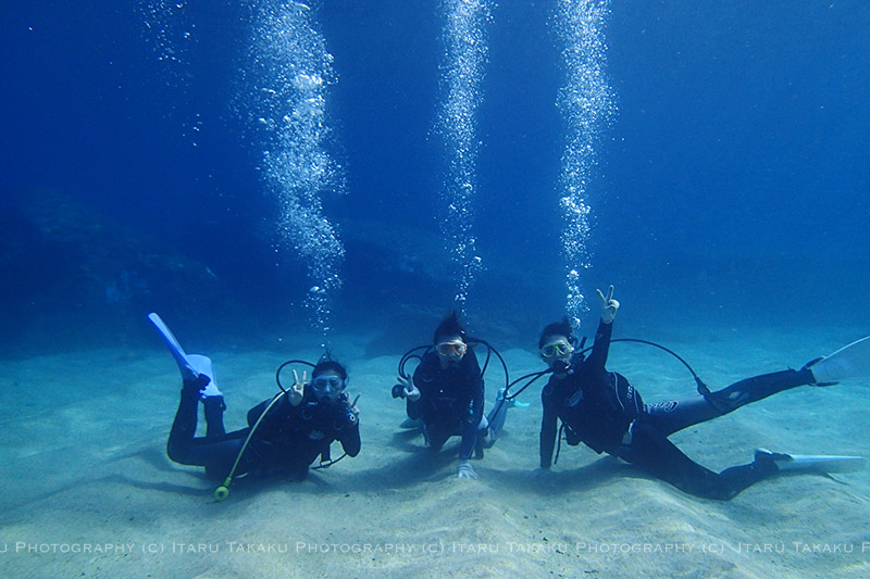 最高の体験ダイビング_b0186442_2332473.jpg