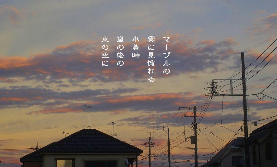 嵐去る空_c0187781_171481.jpg