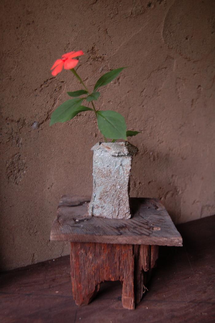今の花と日の出_b0254098_22295167.jpg