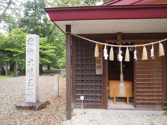 古代の蓮と彌高神社_c0125702_20232671.jpg