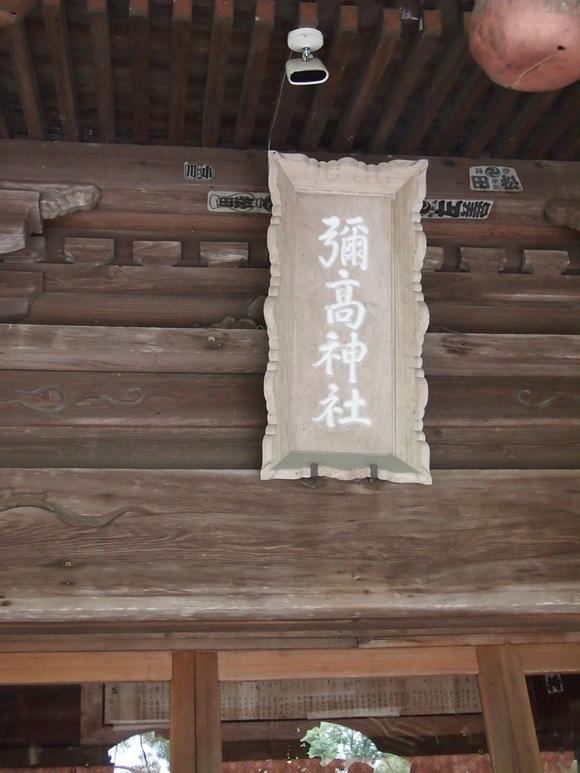 古代の蓮と彌高神社_c0125702_202514100.jpg