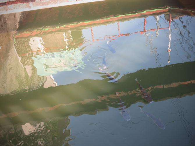 f0148306_2012212.jpg