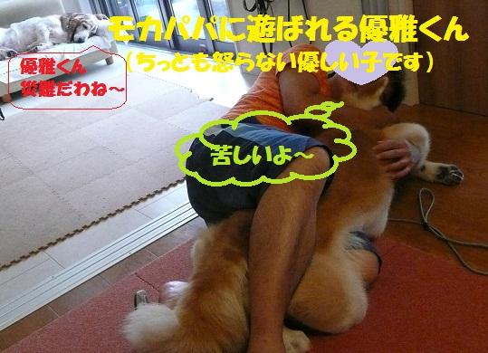 f0121712_1616231.jpg