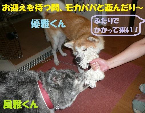 f0121712_16394011.jpg