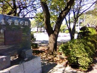 保育園の運動会練習_b0255217_15225193.jpg