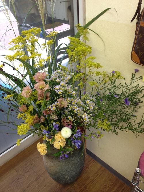 今週お花とセール情報_a0200423_19245666.jpg