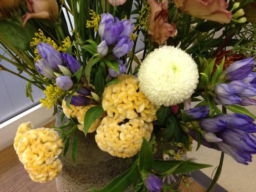 今週お花とセール情報_a0200423_19264057.jpg