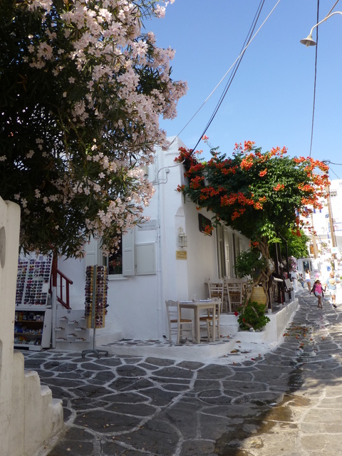 ギリシャ ミコノス島 旅行記4日目-4_e0237625_2301399.jpg