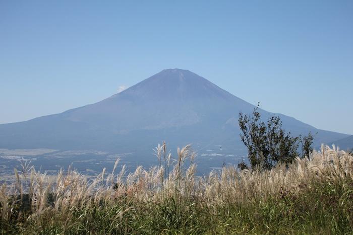 2013.9.18 矢倉岳・ハチクマ、サシバ_c0269342_20494913.jpg