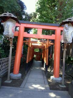 上野の神々の元へご挨拶周り_f0008555_184457.jpg