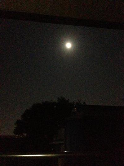明後日の満月バーはきれいなお月様が見えそうです。_a0221457_0283625.jpg