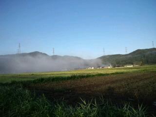 いよいよ収穫の秋!!_d0027486_735074.jpg