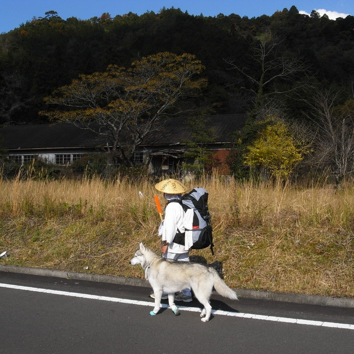 Memory of the second pilgrimage with husky HANA_c0049299_1255237.jpg