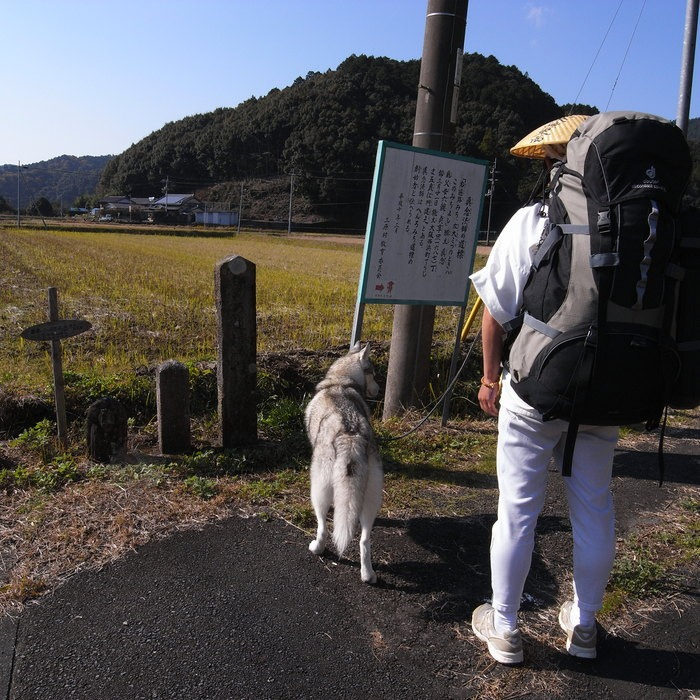 Memory of the second pilgrimage with husky HANA_c0049299_126322.jpg