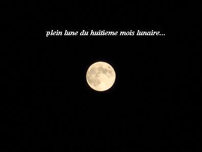 今宵の月・・・☆_c0098807_2217258.jpg