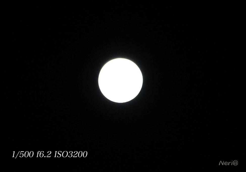 満月 MR.MOONLIGHT_f0141609_20485075.jpg
