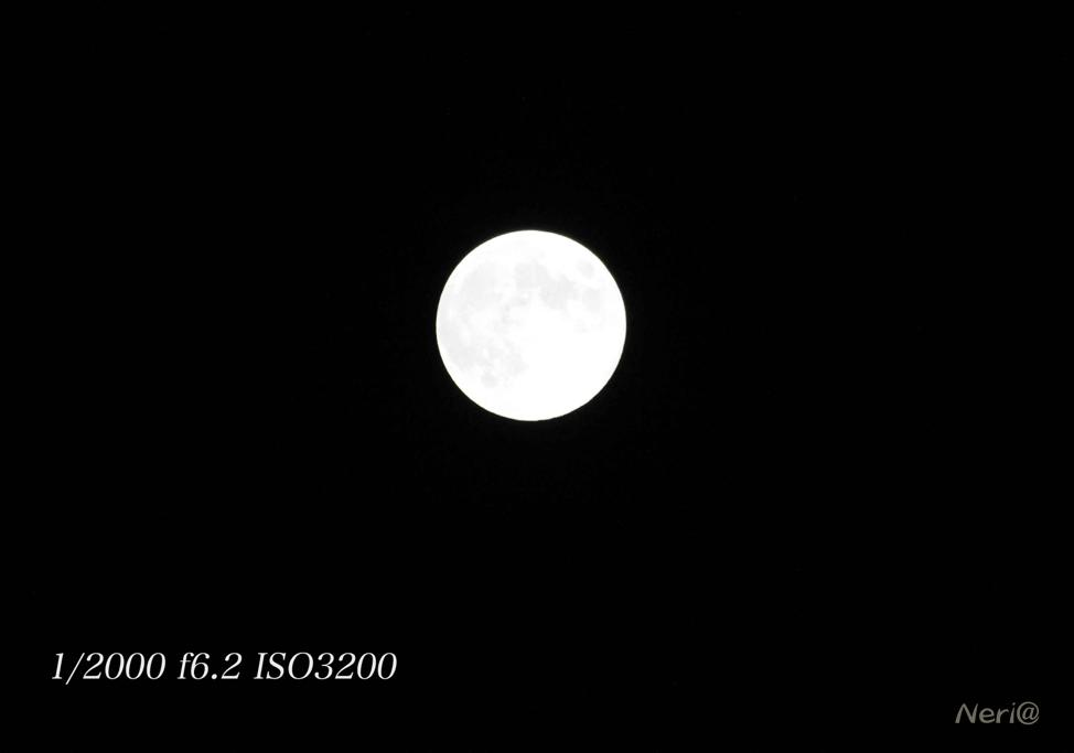 満月 MR.MOONLIGHT_f0141609_20485198.jpg